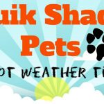 Hot Weather Tips For Your Pet [InfoGraphic]