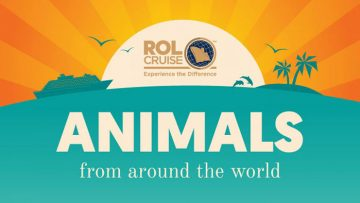 Animals From Around the World [Infographic]