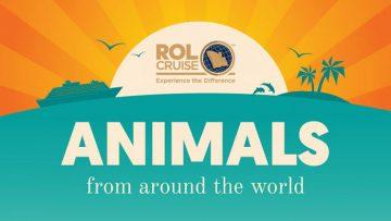 Animals From Around the World [Infographic]