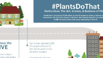 Plants Benefit Society in Many Ways [InfoGraphic]