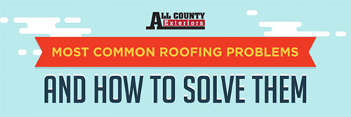 Roof Problems And Best Solutions InfoGraphic