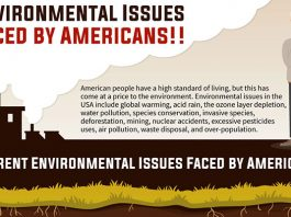 Environmental Issues Faced by Americans