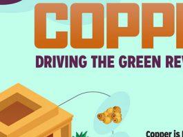 Driving the Green Energy Revolution